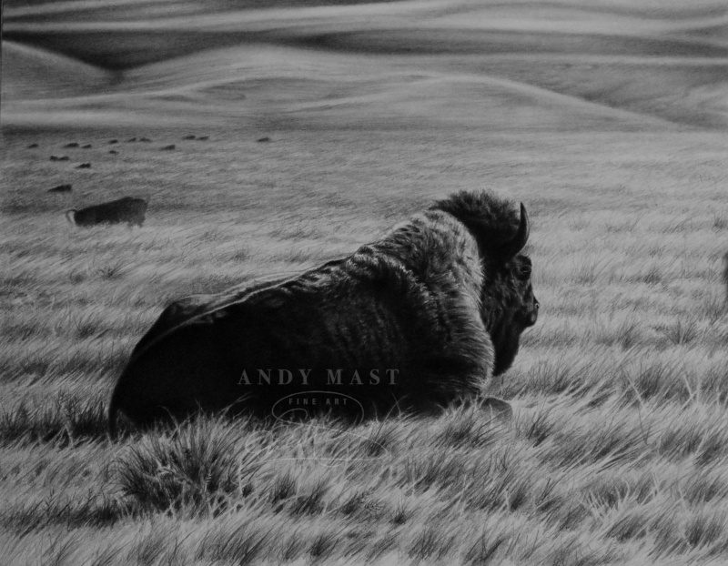 Resting on the Range, pencil art by Andy Mast