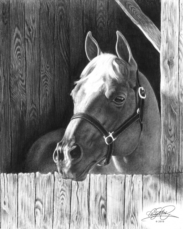 Sunshine & Shadow, pencil art by Andy Mast